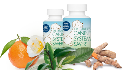 Bottle of Canine System Saver